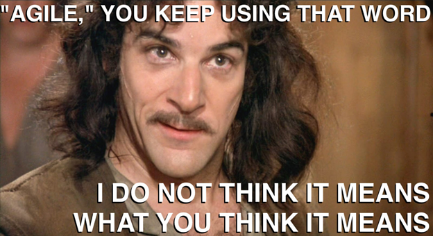 Agile Development The Software Industry S New Meme Tech Notes